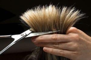 Hair Trim